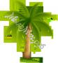 Пальмовое масло рафинированное пищевое