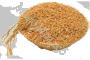 масло Рисовых отрубей рафинированное пищевое
