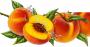 Персиковое масло рафинированное