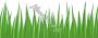 отдушка Зеленая трава