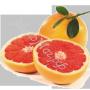 масло Грейпфрутовой косточки
